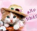 موقع عالم القططط ( مياو مياو دوت نيت )